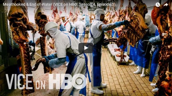 Meat-hooked-and-End-of-Water_video