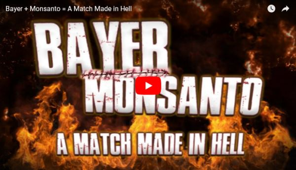 Bayer vs Monsanto - A Match Made in Hell_video
