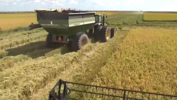 Farmers in America_video